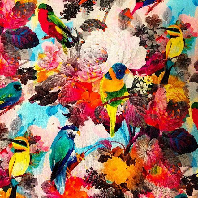 Vi firar att ljuset återvänt med helt nyanlända färgglada tyger! Bomull 169:50 kr/m #gardatextil #mönster #pattern #colors #multicolor #pinkorange #orange #fabricstore #fabric #tygbutik #tyg #bomull #cotton #flowers #blommig #blommigttyg #floral #floralfabric #birds #fåglar
