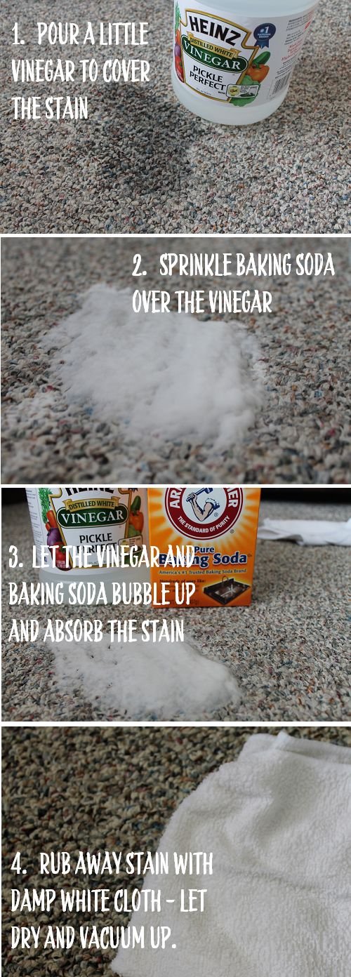 pour a little vinegar to cover the stain, sprinkle baking soda over the vinegar, let it all bubble up and absorb the stain for a couple minutes, rub the stain away with a damp cloth - let dry and vacuum up!
