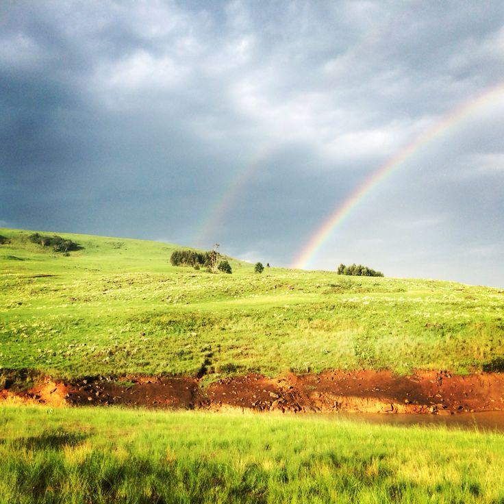 Rainbows over the farm #blessings