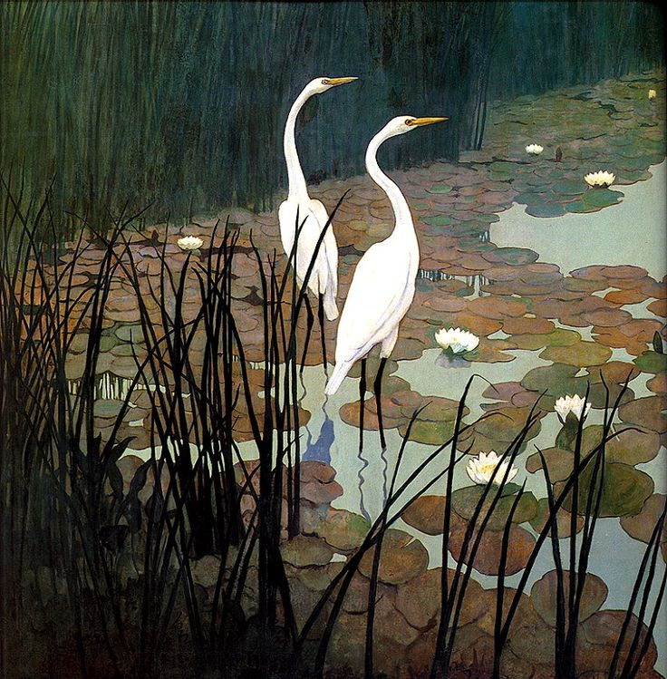 [LRS Art Medley] N.C. Wyeth, Egrets; Image ONLY