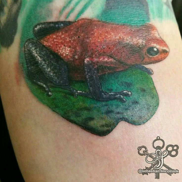 Say hello to this little fellow. He is the ditch frog. He was much fun indeed.  #s8stencilproducts #s8tattoo #s8tattoostencil #blueanchorstencilcreme #worldfamousink #worldfamousinks #dynamicblackink #lincolninktattoo #lincolninkchristchurch #lincolninktattoostudio