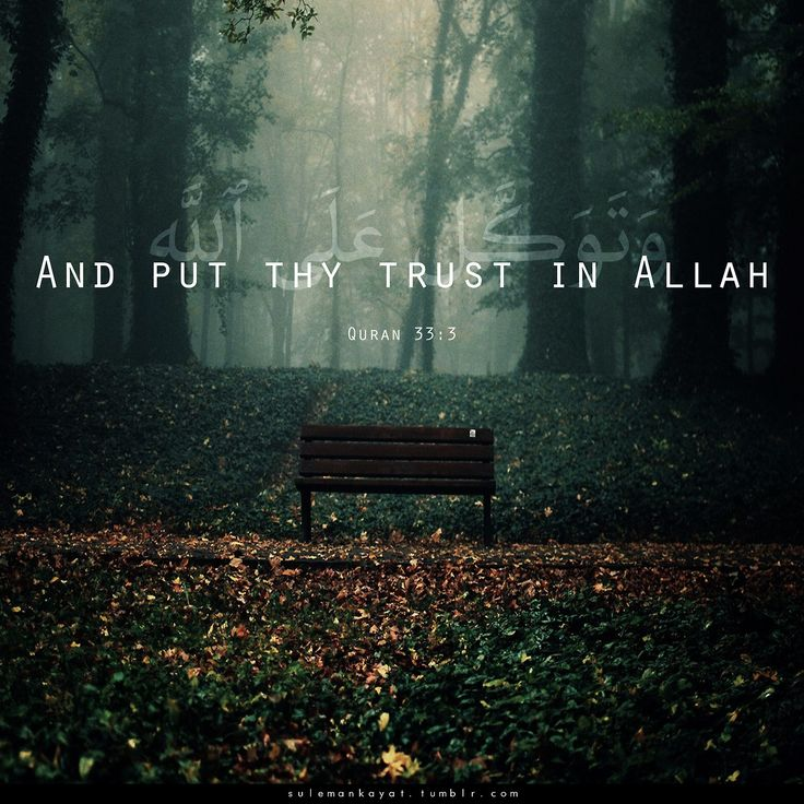 "sulemankayat:    ""And put thy trust in Allah, and enough is Allah as a Disposer of affairs.""  [Quran 33:3]"