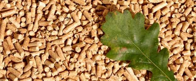 Vietnam Best Supplier Wood Pellets