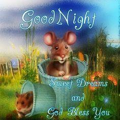 Good night ladies, God Bless ❤