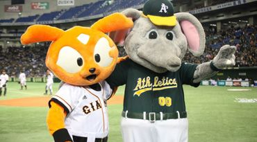 In Japan, A's mascot Stomper makes a new friend from the Yomiuri Giants.