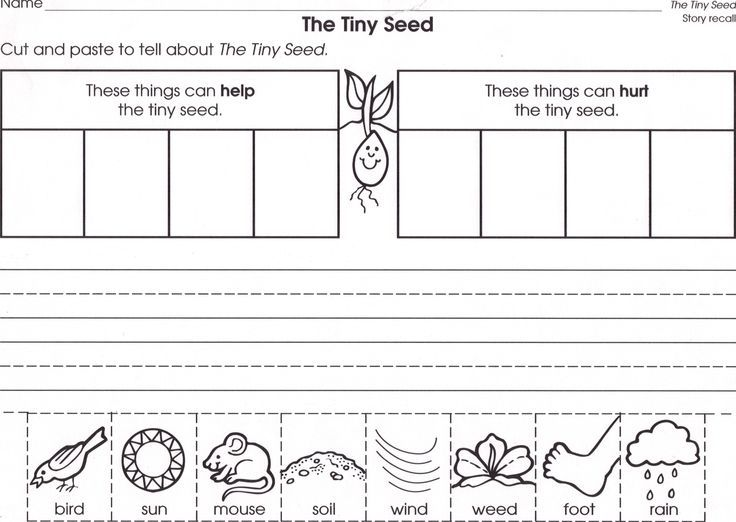 the tiny seed activities - Google Search
