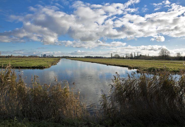 Middelpolder, archief Landschap Noord-Holland