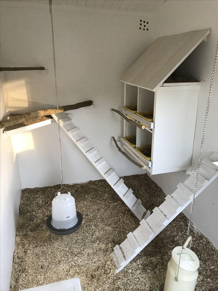 Hönshus värprede Vattenautomat sittpinnar höns ramp hönslucka