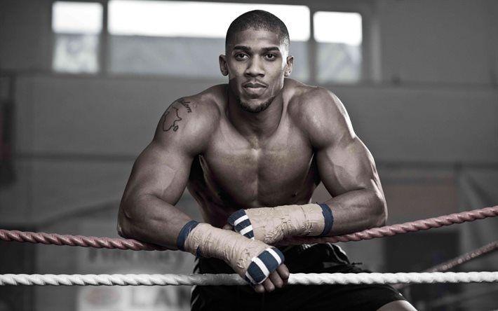 Anthony Joshua, British boxer, world champion, Olympic champion, boxing, IBF, WBA, IBO