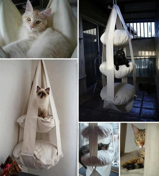 Hanging cat bed -- this would be so easy to make.  My cat would love this~!