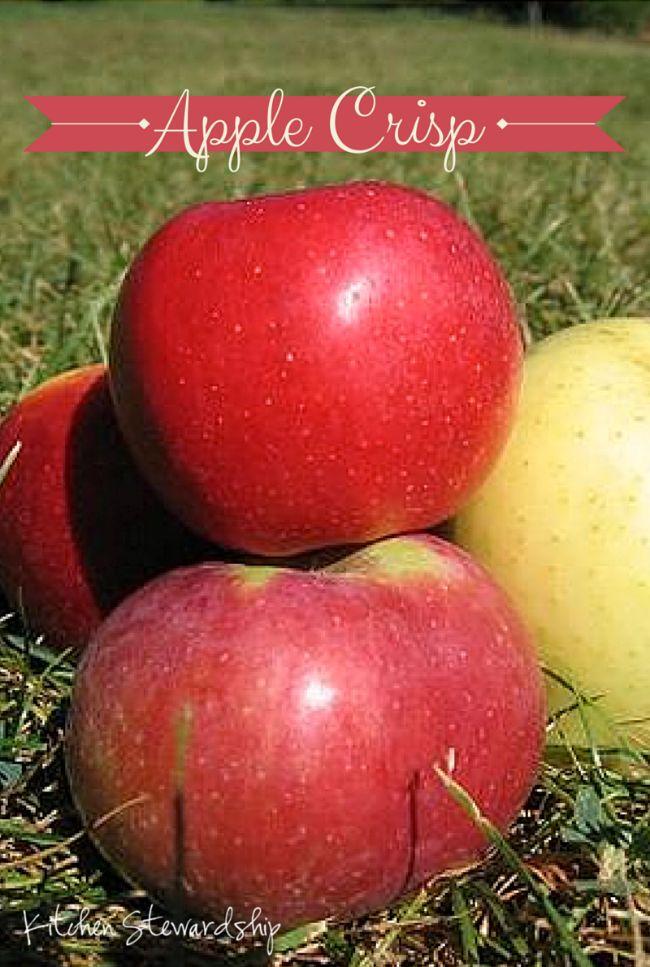Healthy Homemade Baked Apple Crisp Recipe | Apple crisp ...