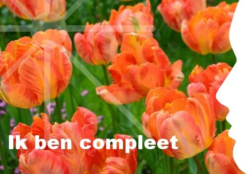"""""""Ik ben compleet."""" Ook je eigen persoonlijke dagelijkse inspiratiekaart ontvangen? http://www.confront.nl/inspiratiekaarten/"""
