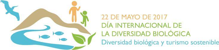 Día Internacional Diversidad