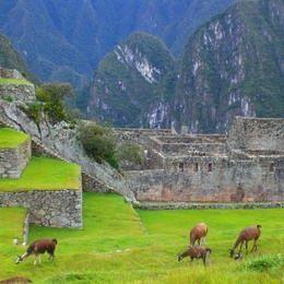 Machu Picchú, Peru