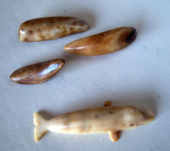 Vintage alaskan walrus ivory carved beluga by