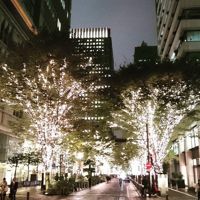 Instagram【ks38skriii】さんの写真をピンしています。 《#丸の内散歩✨✨🎄. . #丸の内イルミネーション #丸の内仲通り #イルミネーション #イルミ #クリスマスイルミネーション #クリスマス #都会 #東京 #夜景 #風景 #景色 #冬》