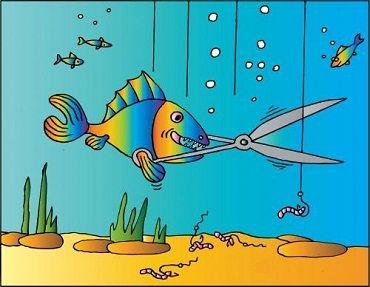 kerstboom grapjes   Tags :vissen,vis,cartoon,cartoons,grapjes,mopjes,leuke plaatjes,humor