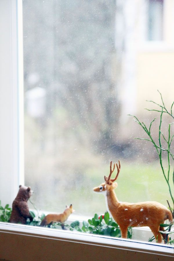 forest animals looking through the window..