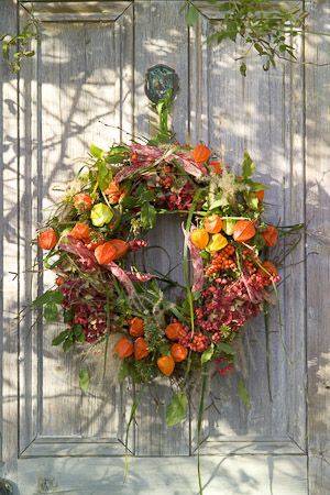 Forager's wreath on door with chinese lanterns, cyperus, miscanthus, borlotti beans, hydrangeas, Iris foetidissima and euonymus b...