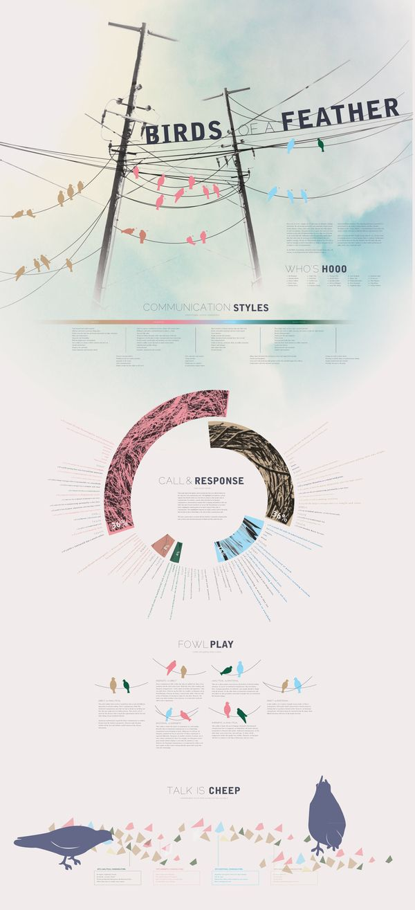 Birds of a Feather info graphic - awesome!!