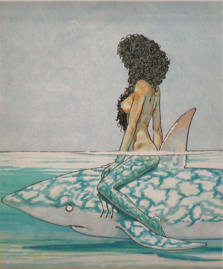 Paz-tastic: Betta sullo squalo