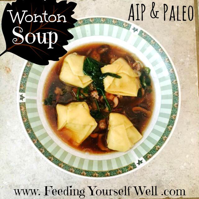 Aip & Paleo - Wonton Soup - www.FeedingYourselfWell.com