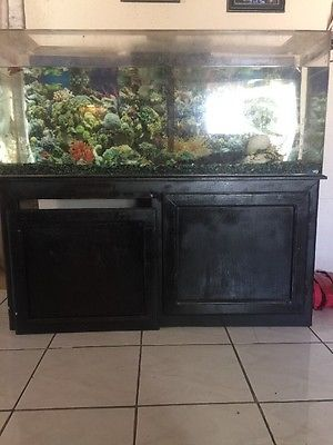 Large fish tank with stand and 1 fish