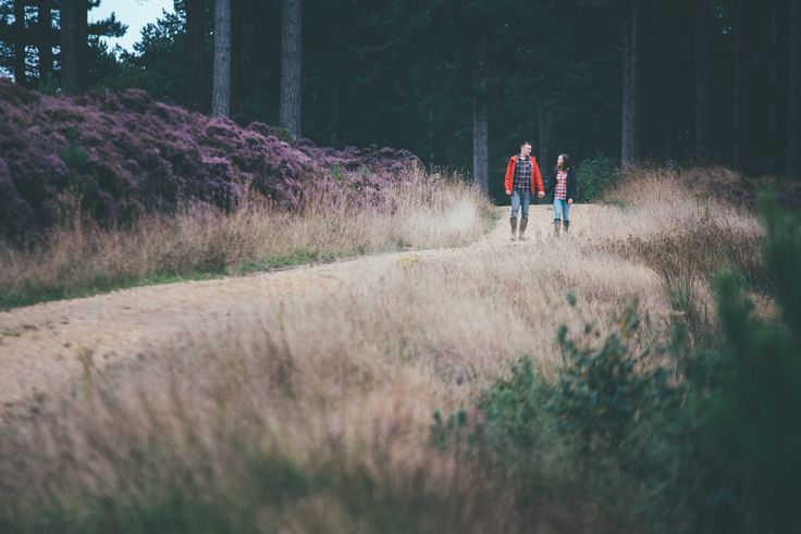 Engagement Shoot at Wareham Forest, Poole.  Matt Fox Photography - Blog - Jennie & Matt