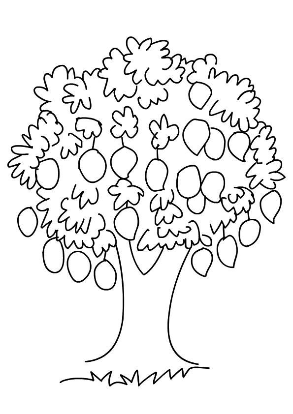 Mango Tree Tree Coloring Page Fruit Coloring Pages Coloring Pages