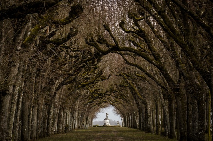 """A mile-long avenue of linden trees leading to a belvedere overlooking the Loire River at """"Palace Pompadour"""" or Chateau de Menars in France."""