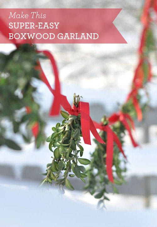 DIY: Super Easy Boxwood Garland: Craft, Boxwood Garland, Easy Boxwood, Diy Christmas Garland Ideas, Diy'S, Holiday Garland Diy, Christmas Garlands Diy, Holiday Garlands, Diy Holiday Garland
