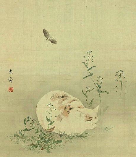 MORI Kansai / Cat and Butterfly 19th century, Japan