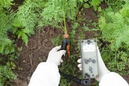 The soil treatment market is segmented on the basis of technology, types and regions. Soil contamination is usually caused by agricultural chemicals, improper disposal of waste and industrial activity.