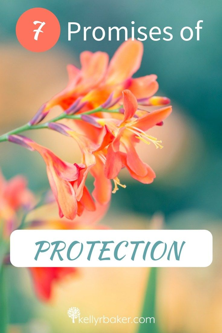 Receive Comfort From These 7 Promises Of Protection Christian