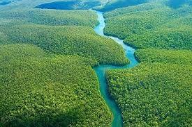 Traveling tour: Wisata  Sungai Yang Terluas di Dunia!