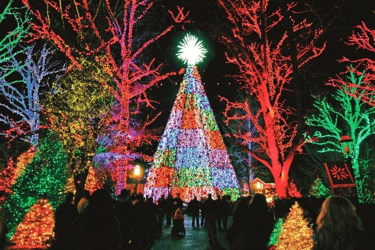 Experience one of America's top holiday destinations--Branson, Missouri. There are a variety of things to do in Branson during winter. http://www.reservebranson.com/travelguide/things-to-do-in-branson-during-winter/ #ReserveBranson