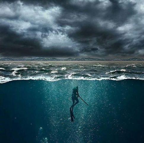 spearfishing alon - Le meilleur du web - Galerie - Chasse sous marine le forum