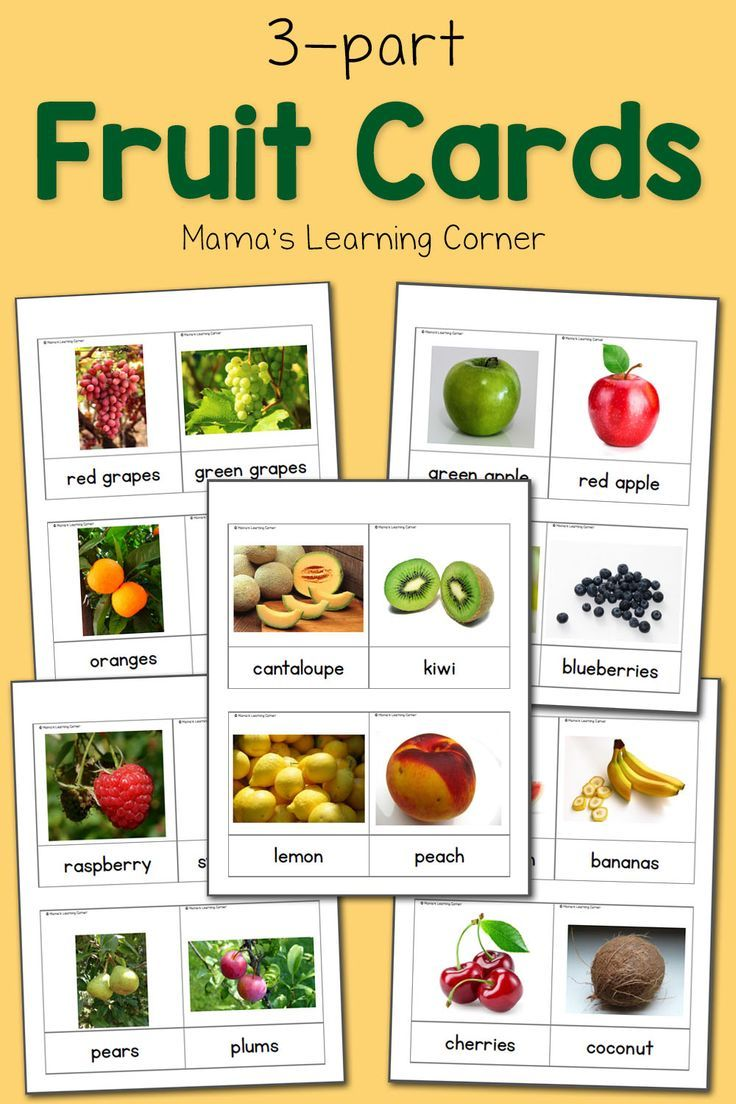 Fruit 3Part Cards Montessori