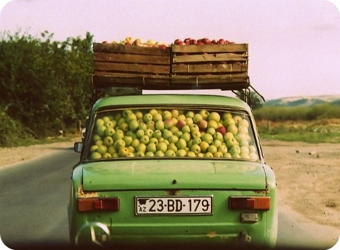 Apple Car   La Vie Boston