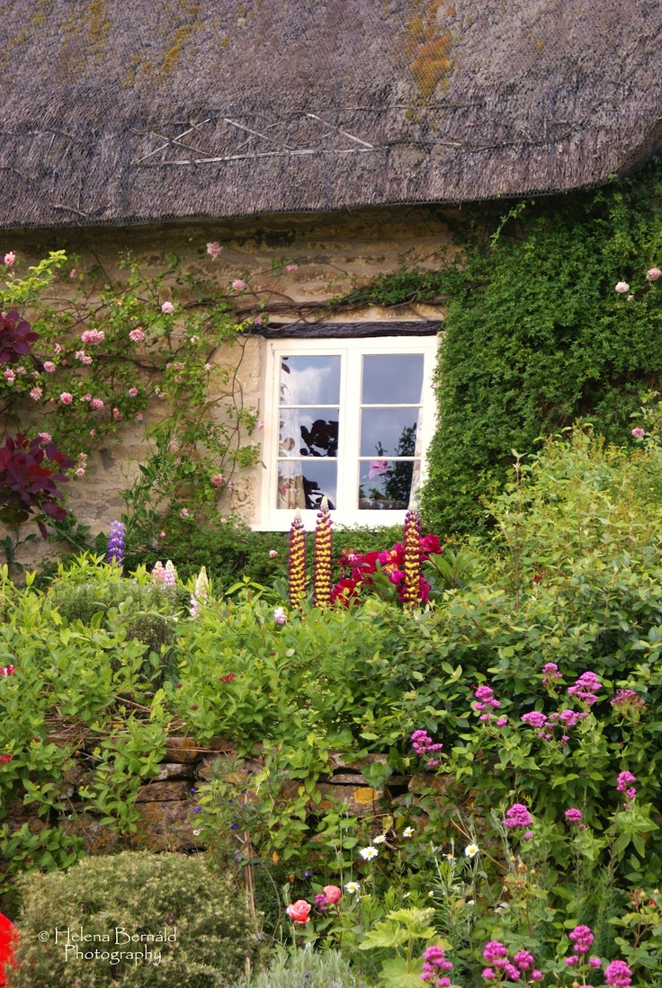861 best Country cottage garden images on Pinterest | Cottage ...