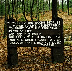 Walden Pond, Concord, MA  Every person should experience the natural beauty of the place that influenced Henry David Thoreau to writeWalden...