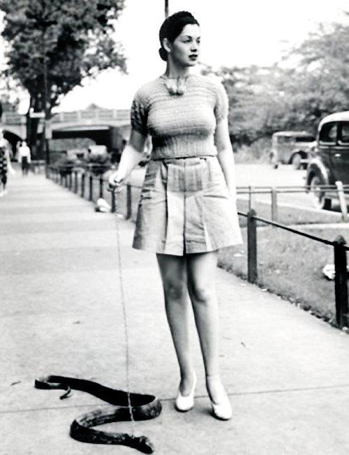 Burlesque dancer Zorita walks her pet snake c. late 1930's ...