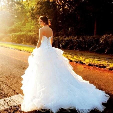 pretty back of a pretty wedding dress