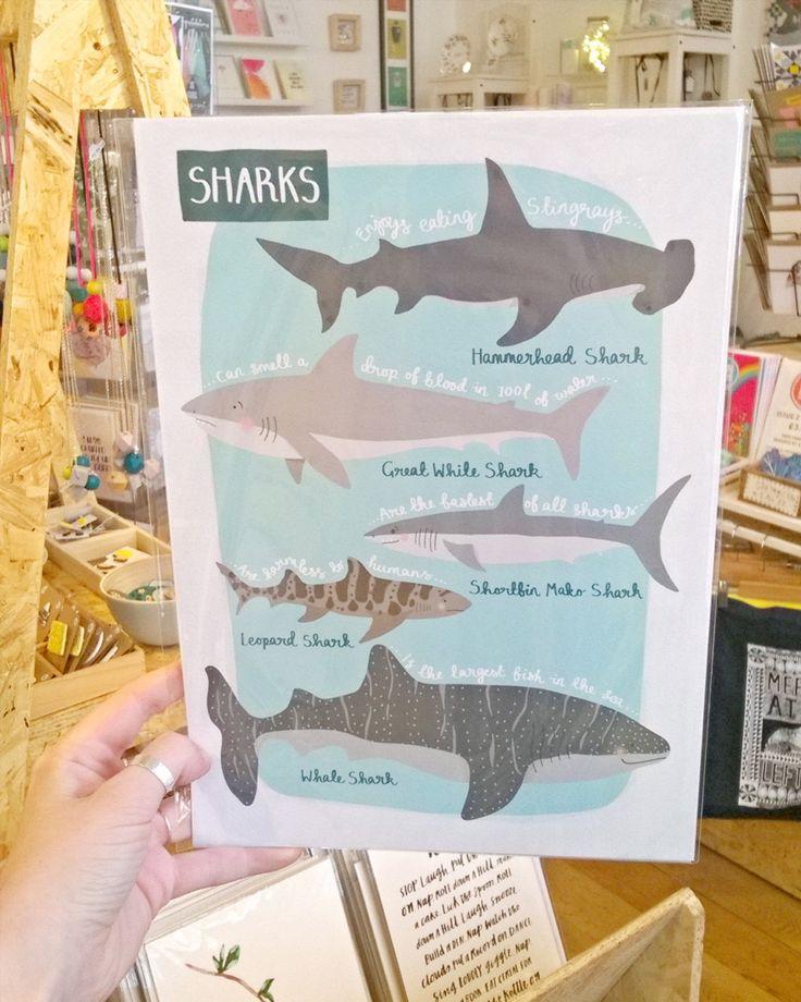 Happy Shark Awareness Day!  Print by @hannahstevensdesign . . . #sharkawarenessday #sharkawareness #shark #sharks #sharklover #hammerheadshark #greatwhiteshark #leopardshark #whaleshark #illustration #print #sealife #illustratorsoninstagram #itsinnottingham #Nottingham #shoplocal #shopsmall