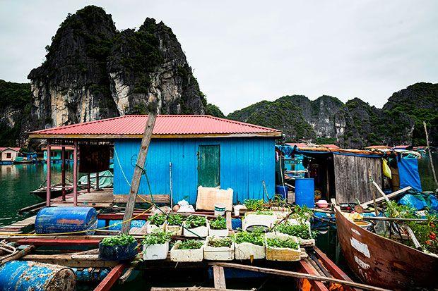 Floating village, Bai Tu Long Bay