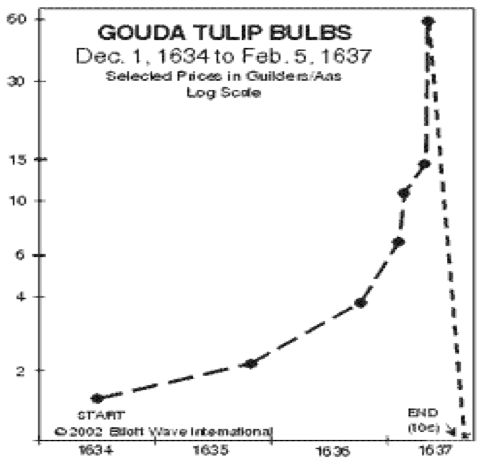 Image result for tulip price chart