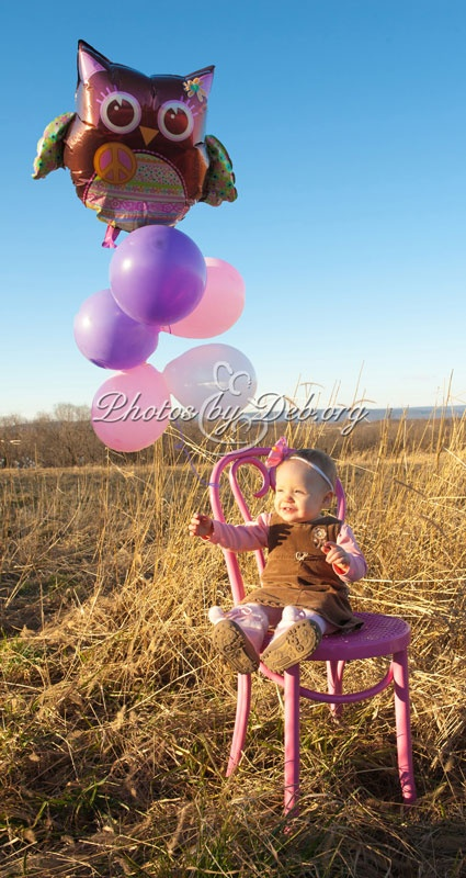 1st birthday owl balloon pictuers