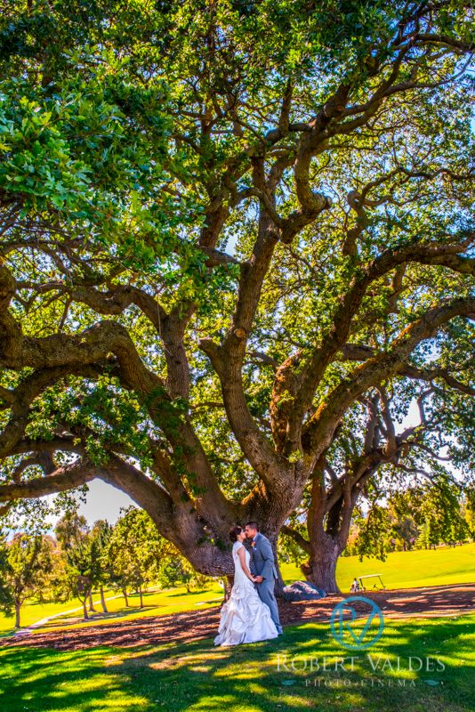 BOUNDARY OAK GOLF COURSE WALNUT CREEK WEDDING PHOTOS  Click here to see more.  http://www.robertvaldesphotography.com/boundary-oak-golf-course-walnut-creek-wedding-photos/