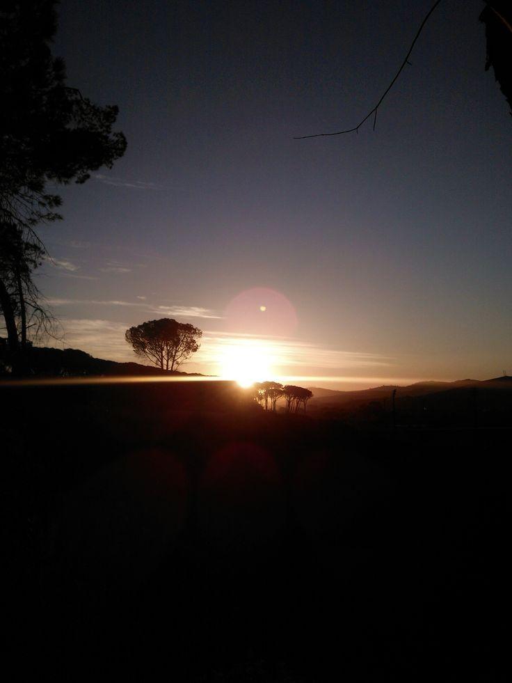 Stellenbosch, South Africa, Home