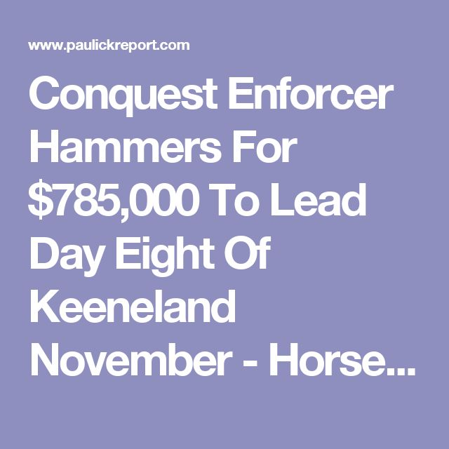 Conquest Enforcer Hammers For $785,000 To Lead Day Eight Of Keeneland November - Horse Racing News | Paulick Report